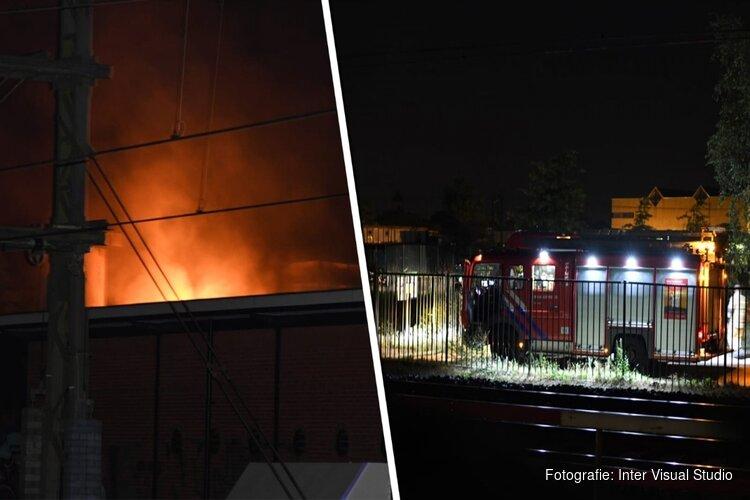 Aan kabels knagende kat oorzaak brand transformatorhuisje Hilversum