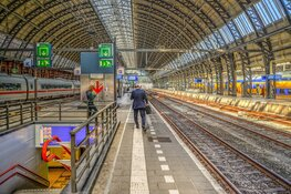 Prorail pakt verouderde monumentale perronkappen aan