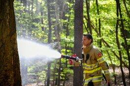 Bosbrand blijkt kampvuur