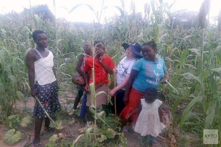 Food 4 food: Binga-Support zamelt geld in voor Zimbabwe met ludieke actie