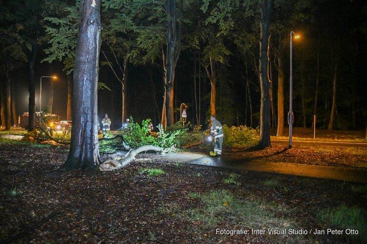 Meters lange tak breekt af in Hilversum